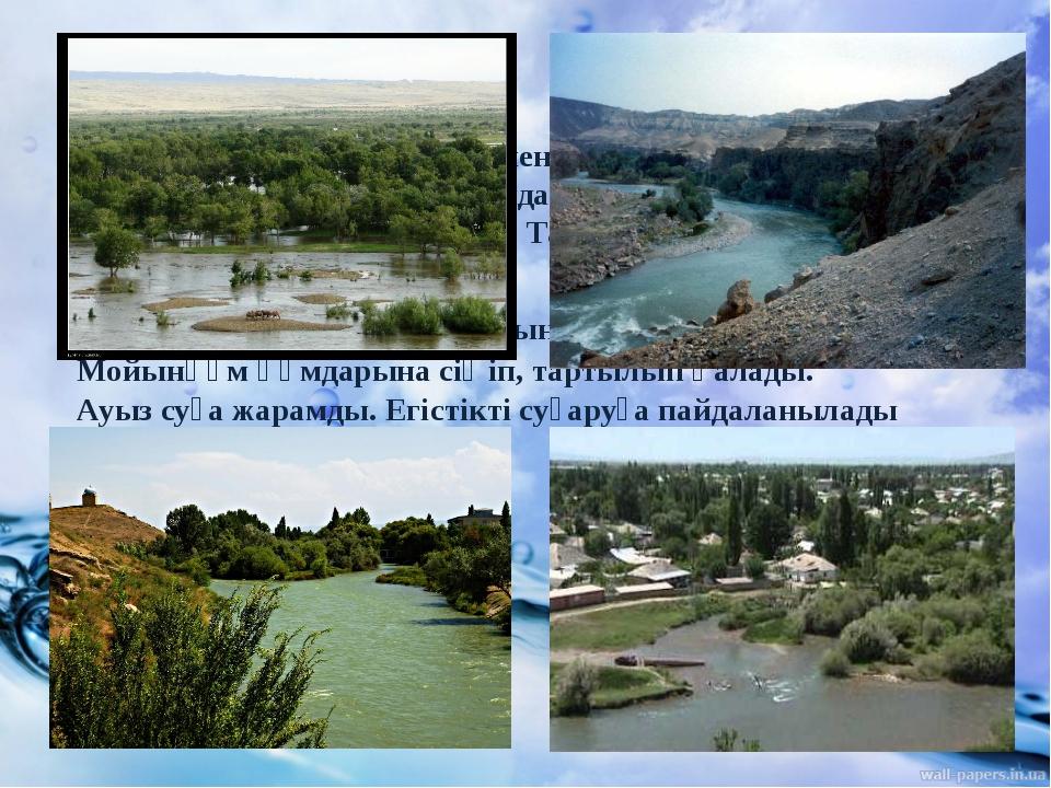 Талас өзені — Қырғызстан мен Қазақстан жеріндегі өзен. Ұзындығы 661 км, Қаза...