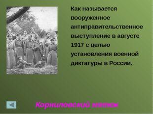 Третьеиюньский переворот 03.06.1907 Правительство было недовольно деятельност