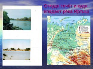 Откуда течёт и куда впадает река Иртыш