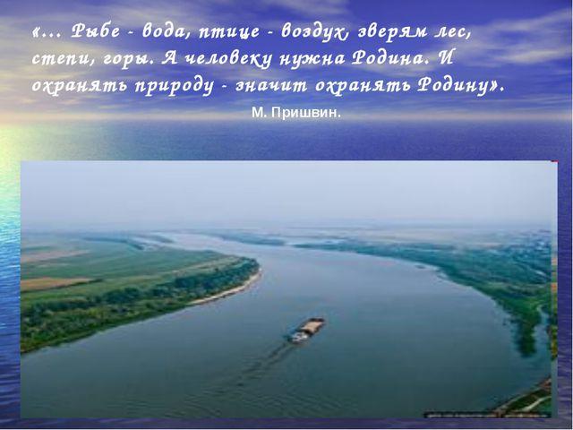 «… Рыбе - вода, птице - воздух, зверям лес, степи, горы. А человеку нужна Род...
