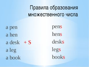 Правила образования множественного числа a pen a hen a desk + S a leg a book