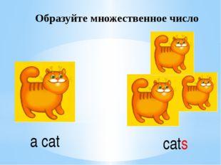 Образуйте множественное число a cat cats