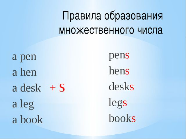 Правила образования множественного числа a pen a hen a desk + S a leg a book...