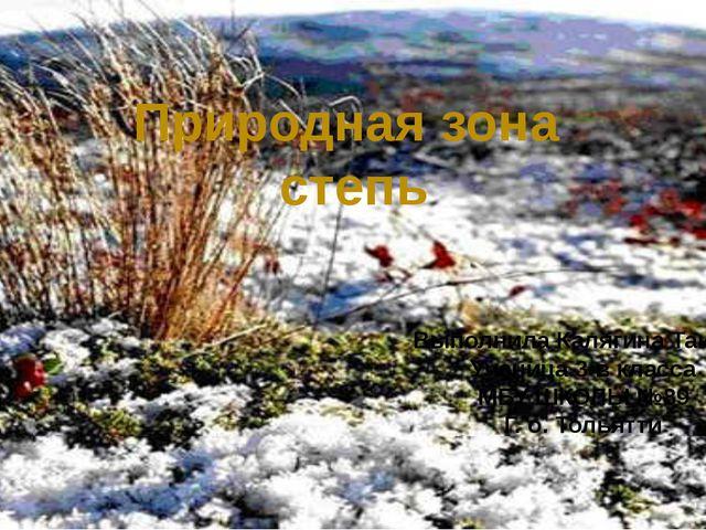 Природная зона степь Выполнила Калягина Таисия Ученица 3-в класса МБУ ШКОЛЫ...