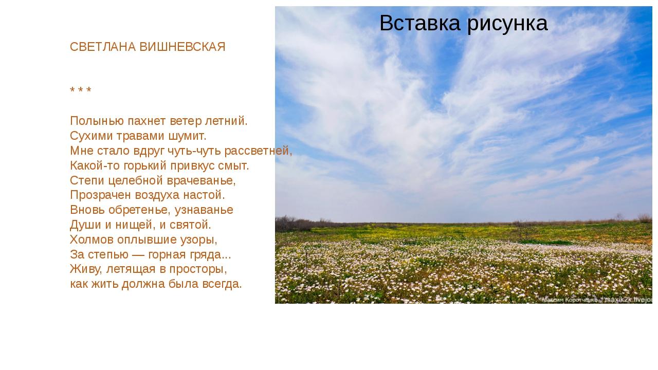 СВЕТЛАНА ВИШНЕВСКАЯ * * * Полынью пахнет ветер летний. Сухими травами шумит....