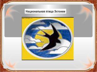 Национальная птица Эстонии