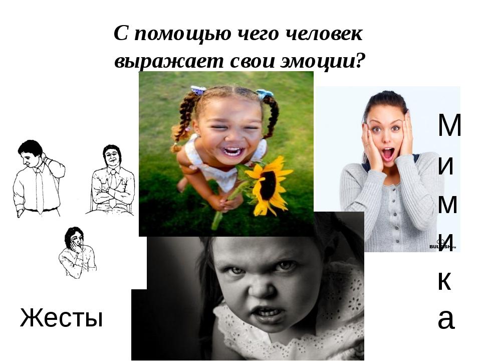 С помощью чего человек выражает свои эмоции? Жесты Мимика