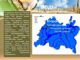 В Предволжье много рек. Основной рекой Предволжья является река Свияга. Она