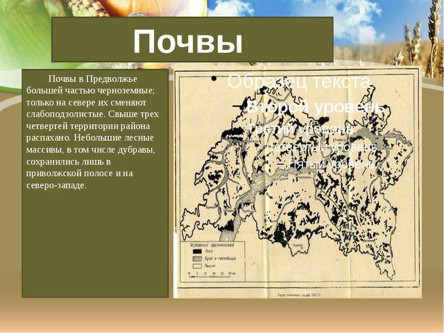 Почвы в Предволжье большей частью черноземные; только на севере их сменяют с...