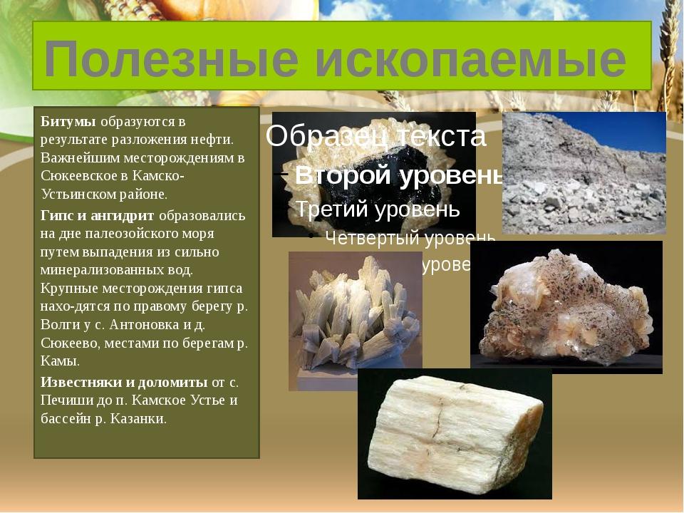 Битумы образуются в результате разложения нефти. Важнейшим месторождениям в...