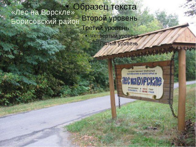 «»»»Лл «Лес на Ворскле» Борисовский район