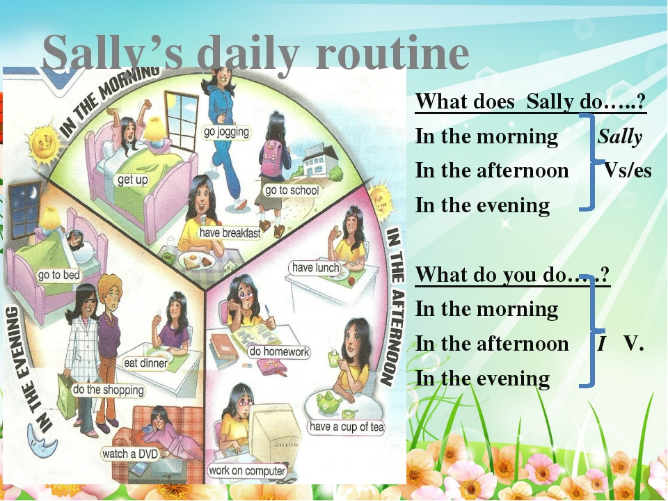 * What does Sally do…..? In the morning Sally In the afternoon Vs/es In the e...