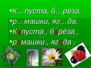 К…пуста, б…рёза, р…машки, яг…да. Капуста , берёза , ромашки , ягода .