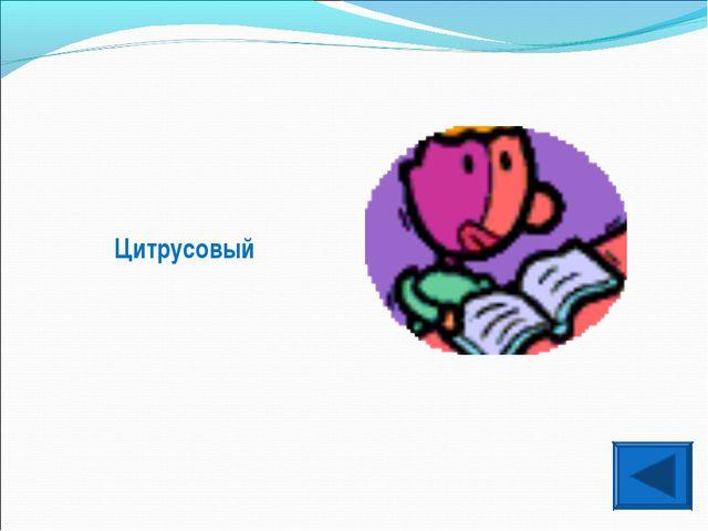 Цитрусовый