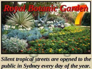 Royal Botanic Garden Silent tropical streets are opened to the public in Sydn