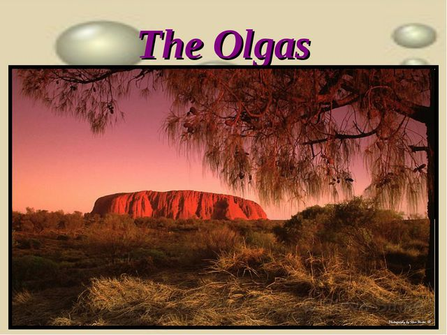 The Olgas