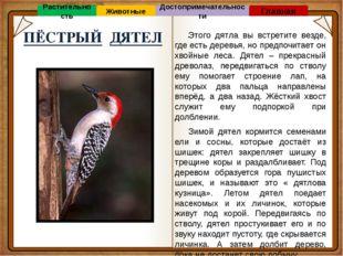 «Советую прочитать» Главная Л.А. Багрова Я познаю мир (Страны и народы) Книг