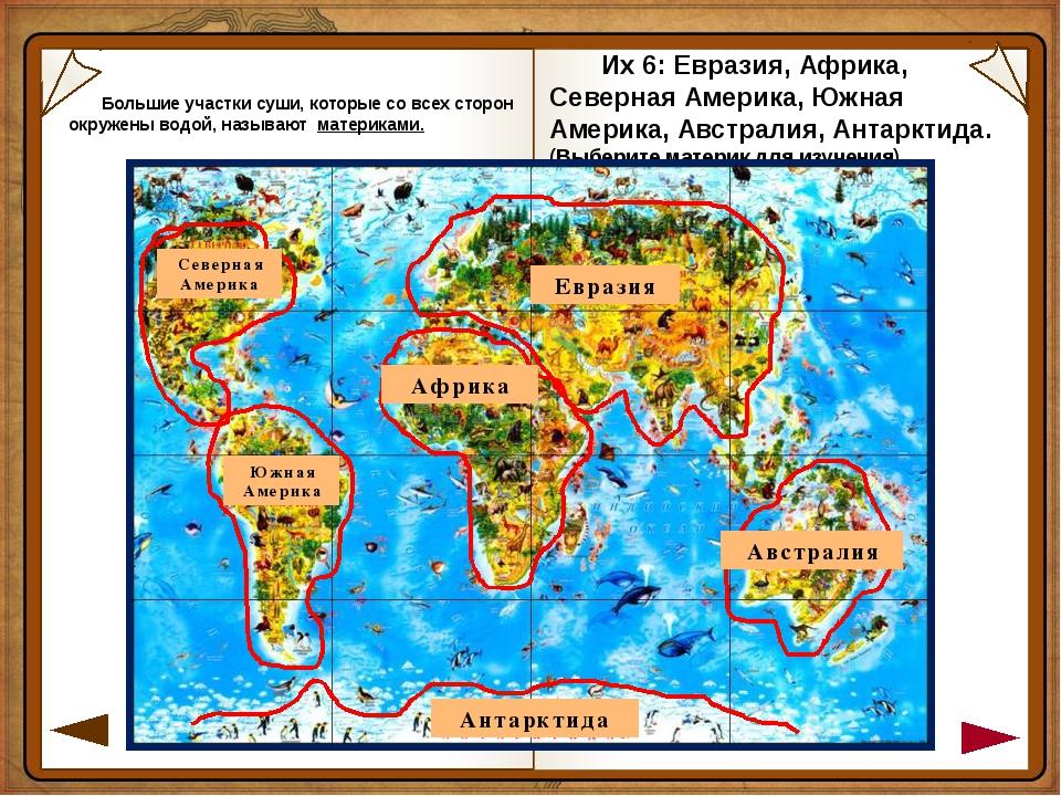 Животный мир Антарктиды ПИНГВИНЫ ТЮЛЕНЬ МОРСКОЙ СЛОН КОСАТКА В Антарктиде от...