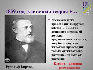 """1859 год: клеточная теория +… """"Всякая клетка происходит из другой клетки… Там"""