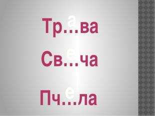 Тр…ва а Св…ча е Пч…ла е