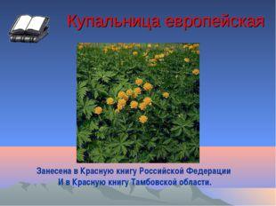 Купальница европейская Занесена в Красную книгу Российской Федерации И в Крас