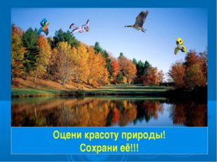 Оцени красоту природы! Сохрани её!!!