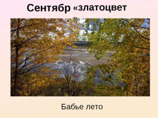 Сентябрь - «златоцвет» Бабье лето