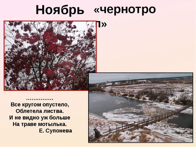 Ноябрь - «чернотроп» …………… Все кругом опустело, Облетела листва. И не видно у...