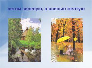 летом зеленую, а осенью желтую