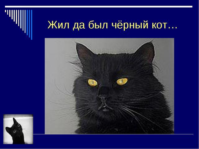 Жил да был чёрный кот…
