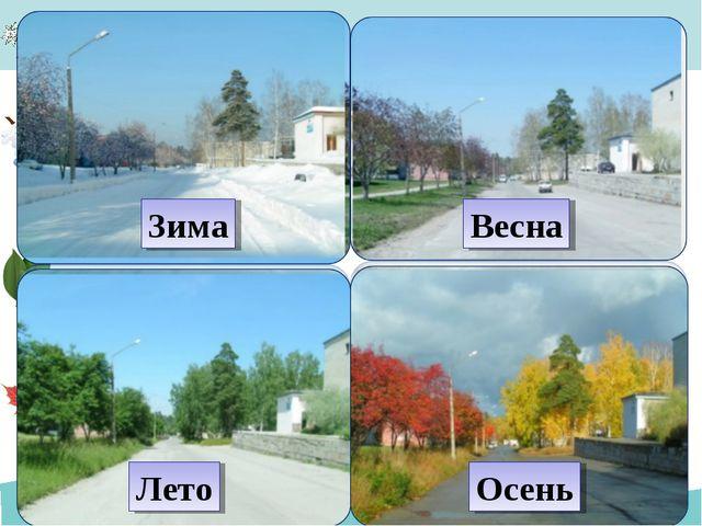 Лето Зима Весна Осень