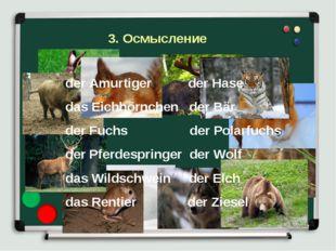 der Amurtiger der Hase das Eichhörnchen der Bär der Fuchs der Polarfuchs der