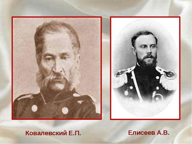 Ковалевский Е.П. Елисеев А.В.