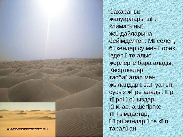 Сахараның жануарлары шөл климатының жағдайларына бейімделген. Мәселен, бөкенд...
