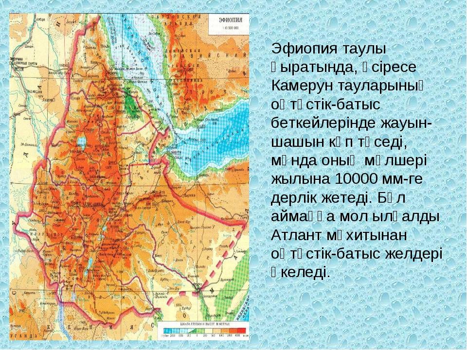 Эфиопия таулы қыратында, әсіресе Камерун тауларының оңтүстік-батыс беткейлері...