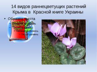 14 видов раннецветущих растений Крыма в Красной книге Украины