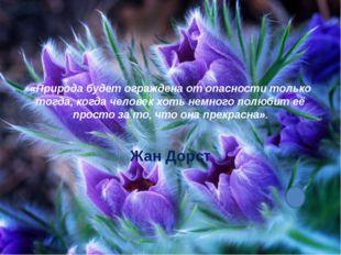 «Природа будет ограждена от опасности только тогда, когда человек хоть немног