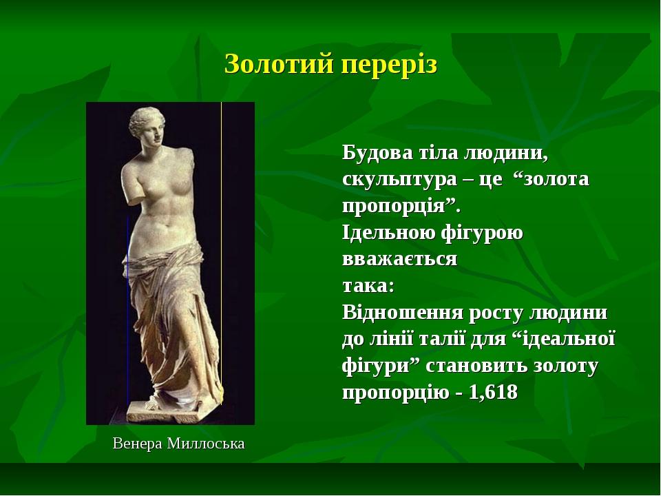 """Золотий переріз Венера Миллоська Будова тіла людини, скульптура – це """"золота..."""