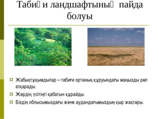 Табиғи ландшафтының пайда болуы Жабықтұқымдылар – табиғи ортаның құруындағы м