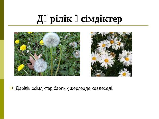 Дәрілік өсімдіктер Дәрілік өсімдіктер барлық жерлерде кездеседі.