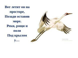 Вот летит он на просторе, Позади оставив море. Реки, рощи и поля Под крылом у…