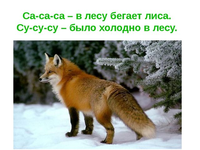 Са-са-са – в лесу бегает лиса. Су-су-су – было холодно в лесу.