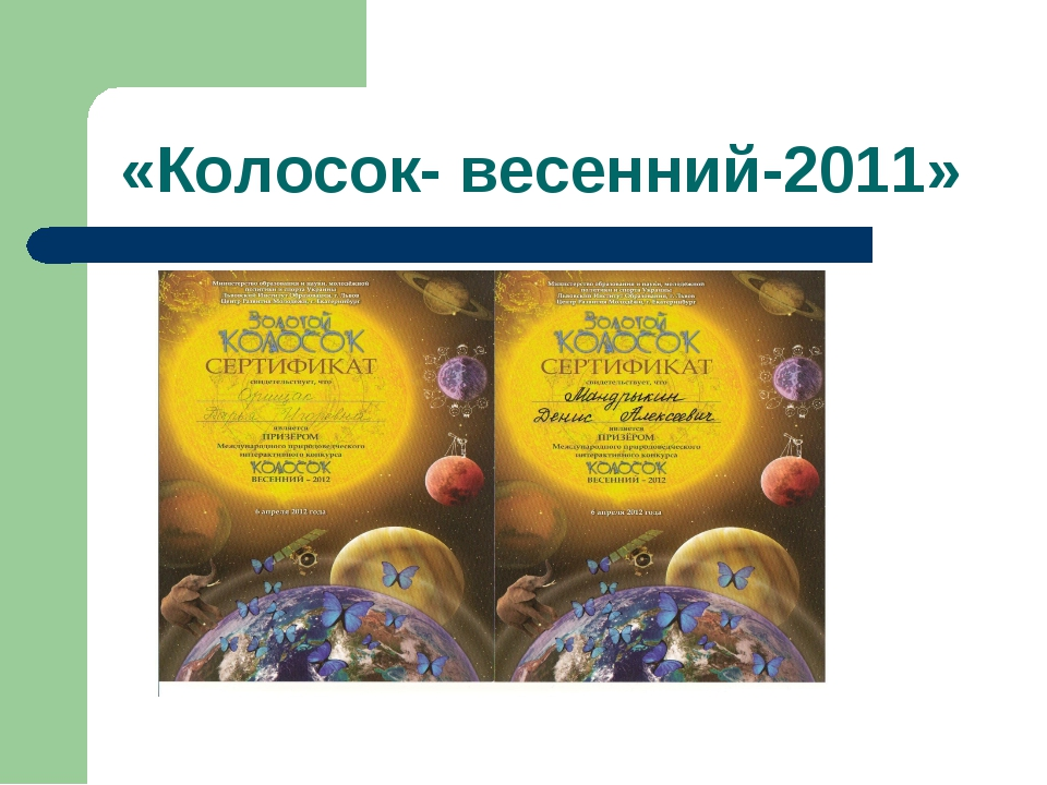 «Колосок- весенний-2011»