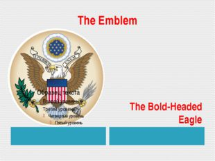 The Emblem The Bold-Headed Eagle
