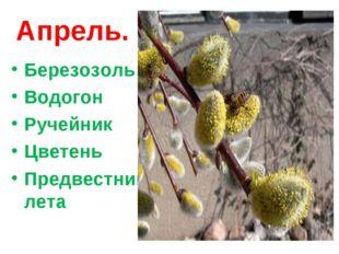 Апрель. Березозоль Водогон Ручейник Цветень Предвестник лета