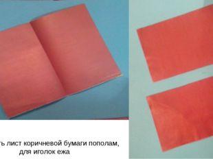 Разделить лист коричневой бумаги пополам, для иголок ежа