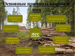 Основные причины вырубки леса 20 тысяч вещей: ткани, игрушки используется в к