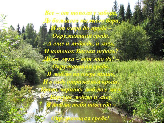 Все – от тополя у забора, До большого темного бора, И от озера до пруда –...