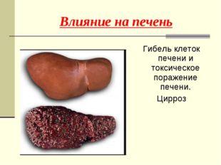 Гибель клеток печени и токсическое поражение печени. Цирроз Влияние на печень