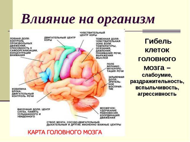 Влияние на организм Гибель клеток головного мозга – слабоумие, раздражительно...